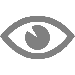 Icon of an eye